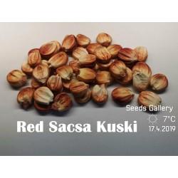 Peruanische Riesen rote Sacsa Kuski Mais Samen 3.499999 - 8