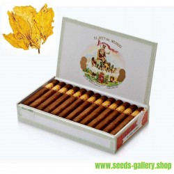 Hav. Gold Tobacco Smooth 1000 Tabaksamen