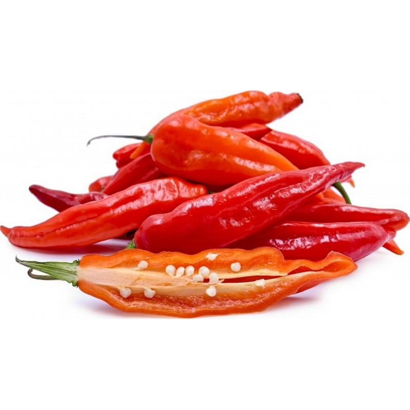 Sementes de pimentão de Aji Chicotillo Rojo (Capsicum pendulum) 2.15 - 5
