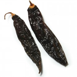 Aji Panca Peruanski Cili Seme (Capsicum baccatum) 1.65 - 6