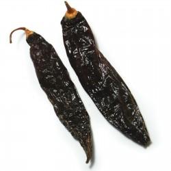 Graines de piment péruvien Ají Panca (Capsicum baccatum) 1.65 - 6