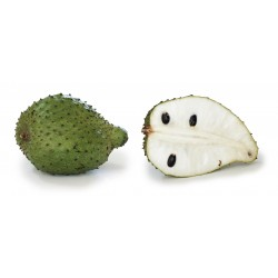 Гравиола, Сметанное яблоко, Гуанабана (Annona muricata) 2.049999 - 4