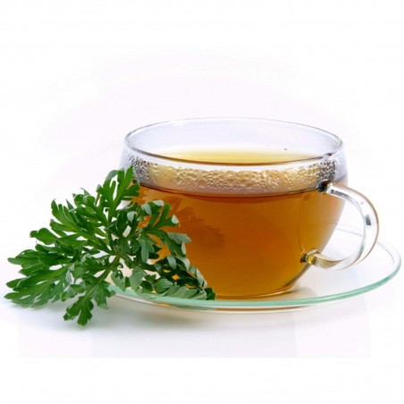 Σπόροι Artemisia annua (Αψιθιά κινέζικη) 1.95 - 3