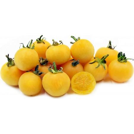 Sementes de Tomate pêssego (Peach tomato) 1.95 - 1