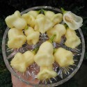 Graines de Citron Caviar