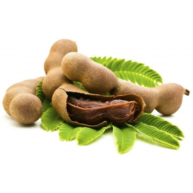 Σπόροι Tamarind - Τάμαριντ (Tamarindus indica) 2.2 - 1