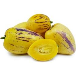 Дынная груша, Пепино, Сладкий огурец семена 2.55 - 6