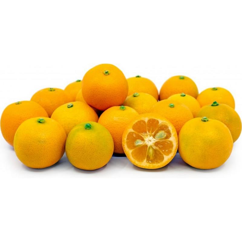 Каламондин, цитрофортунелла Семена 2.65 - 7
