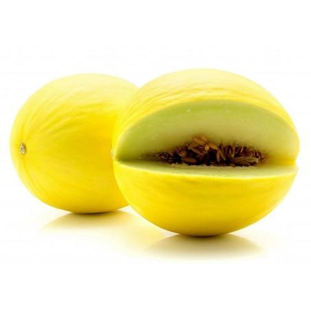 Canary Gul Honungsmelon Frön 1.95 - 3