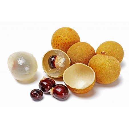 Dragon eye, Longan Seeds (Dimocarpus longan)