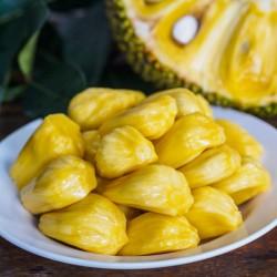 Jackfruit Seeds (Artocarpus heterophyllus) 5 - 2