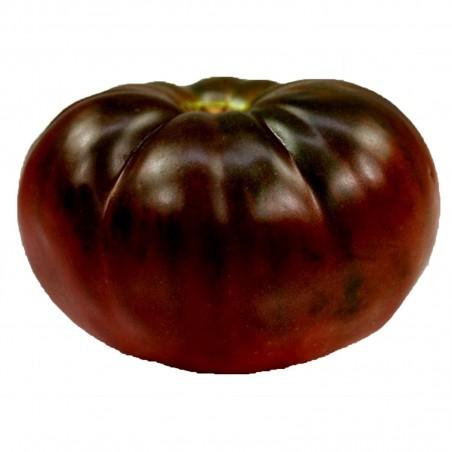 Brandywine Black Tomatensamen
