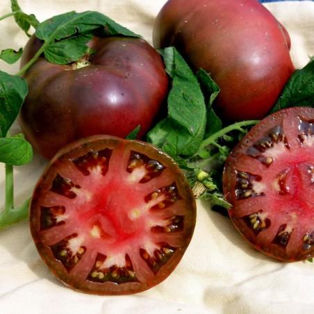 Graines Tomate ancienne noire BRANDYWINE BLACK 1.85 - 2