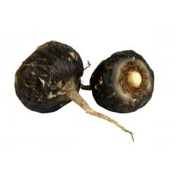 Schwarze Maca Samen (Lepidium meyenii) 2.049999 - 1