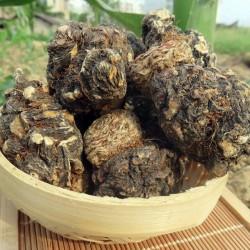Semillas de Maca Negro (Lepidium meyenii) 2.049999 - 3