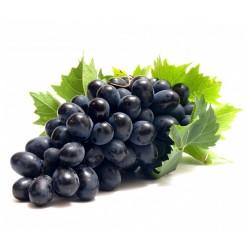Black Grape Seeds (vitis vinifera) 1.55 - 1