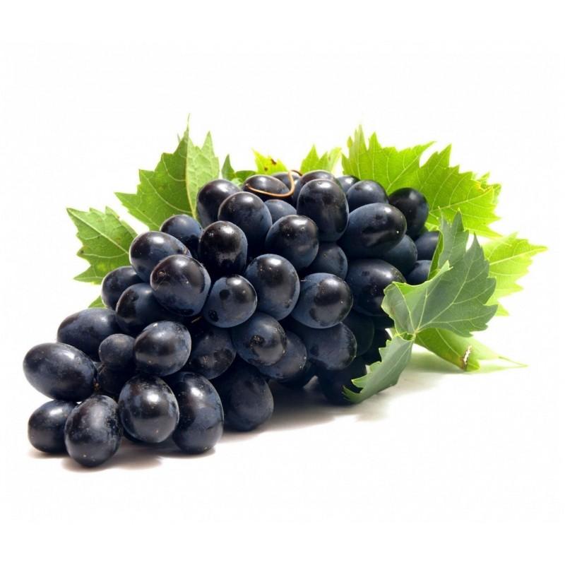 Schwarze Weintraube Samen (vitis vinifera) 1.55 - 1