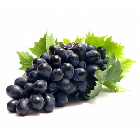 Black Grape Seeds (vitis vinifera)