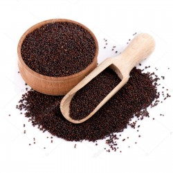 Crni Senf Seme (Brassica nigra) 1.45 - 1