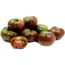 Graines Tomate Noire De Crimée 1.85 - 4