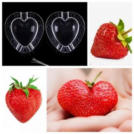 Molde de frutas en forma de Corazón, pera, melón 15 - 1
