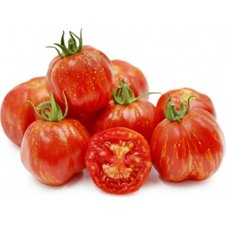 Semillas de tomate STRIPED STUFFER 1.65 - 7