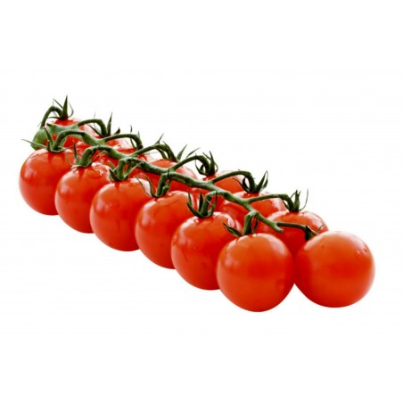 Österreich BLUMAUER Cherry Rispentomaten Samen 1.75 - 4