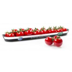 Österreich BLUMAUER Cherry Rispentomaten Samen 1.75 - 3