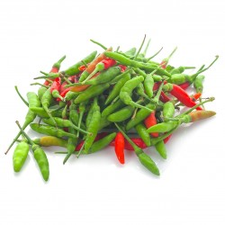 Graines De Bird's Eye Piments