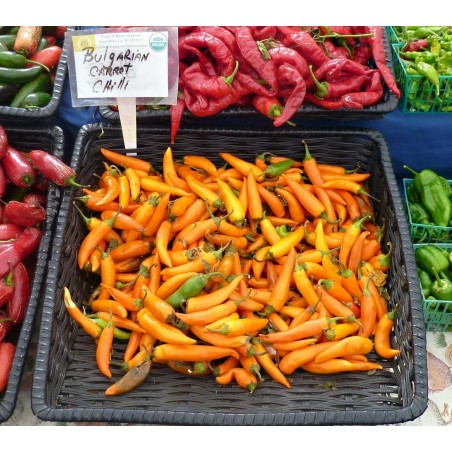 Bulgarian Carrot Chili Pepper Seeds 1.8 - 5