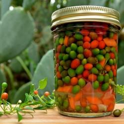 Sementes de Pimenta Chiltepin ou Tepin 2.5 - 2