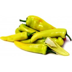 Hungarian Hot Wax Chili Samen
