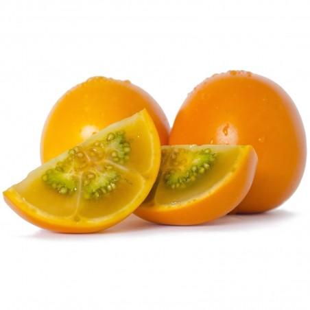 Семена Паслён ки́тоский, Наранхилья (Solanum quitoense) 2.45 - 5