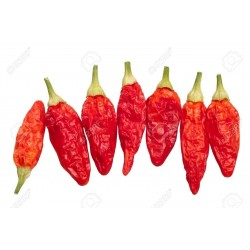 Chili Tabasco Seeds 2.15 - 4