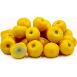 Εξωτικά φρούτα Σπόροι Muruçi, Nanche, Nance (Byrsonima crassifolia) 4.75 - 1