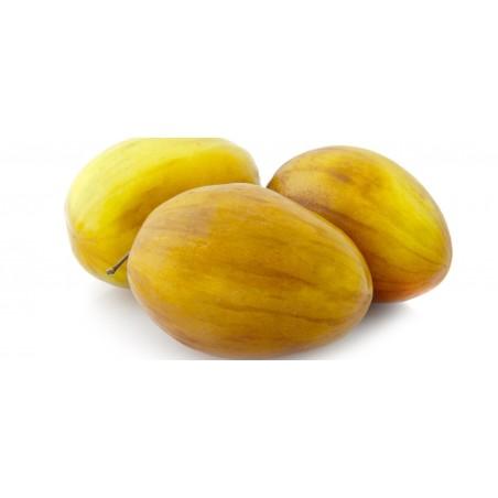 Indian Jujube Seeds (Ziziphus mauritiana) 3.5 - 9