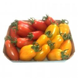 Sementes de Tomate Mini San Marzano Amarelo e vermelho 1.95 - 4