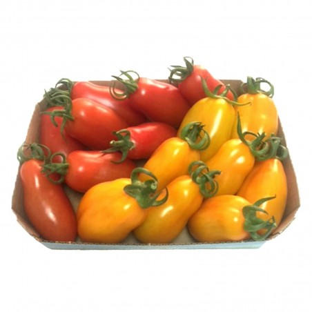 Mini San Marzano Yellow and Red Tomato Seeds 1.95 - 4
