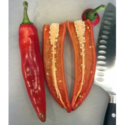 Hot Chili Pepper ANAHEIM seeds (Capsicum Annuum) 1.75 - 4