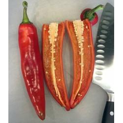 Semillas de chile ANAHEIM (Capsicum Annuum) 1.75 - 4