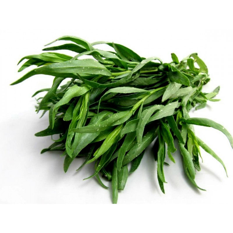Yauhtli - Mexikanische Estragon Samen (Tagetes lucida) 1.65 - 1