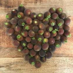 Ceylon Krusbär Frön (Dovyalis hebecarpa) 2.95 - 3