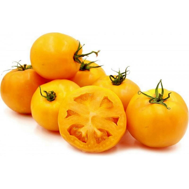 Golden Jubilee Tomaten Samen 1.55 - 2