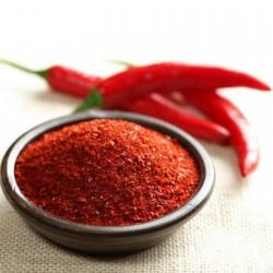 Chili Seeds Taeyang medium 1.85 - 2