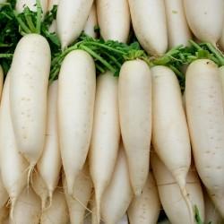Семена Редьки Ледяной Свечи 1.55 - 2