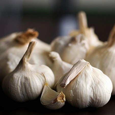 German Extra Hardy Garlic cloves 2.95 - 1