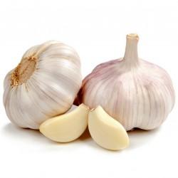 German Extra Hardy Garlic cloves 2.95 - 3