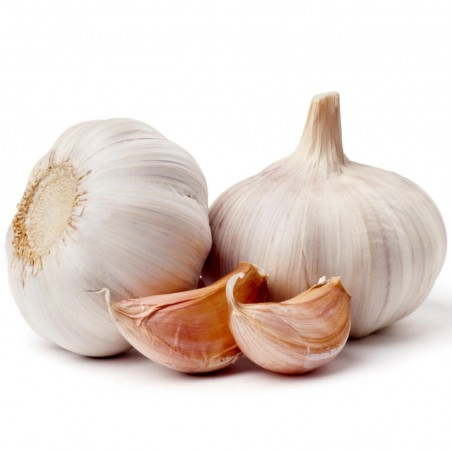 German Extra Hardy Garlic cloves 2.95 - 2