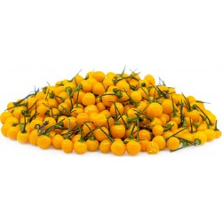 Sementes de pimenta...