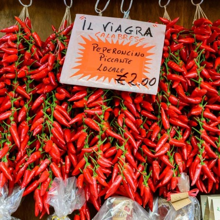 Italian PEPERONCINI Hot Chili Seeds